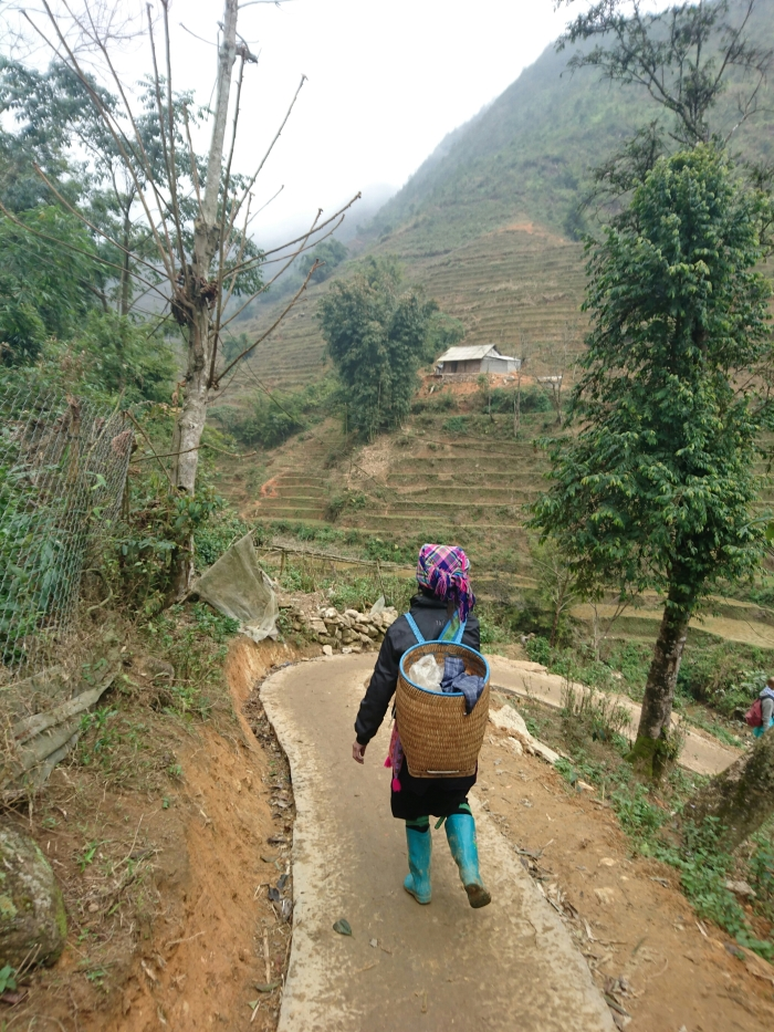 A Hmong woman walks down the hill through rice terraces to her village
