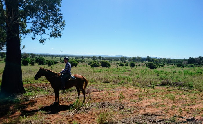 Getting dirty on the farm: an authentic outback experience