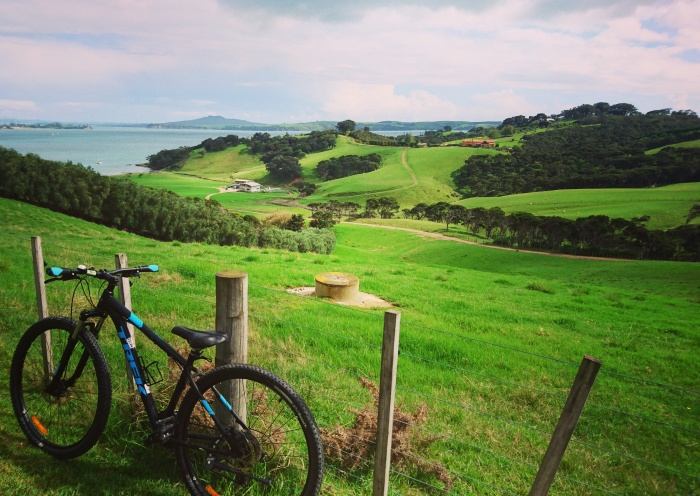 Bike propped against the fence overlooking vineyards on Waiheke Island, New Zealand