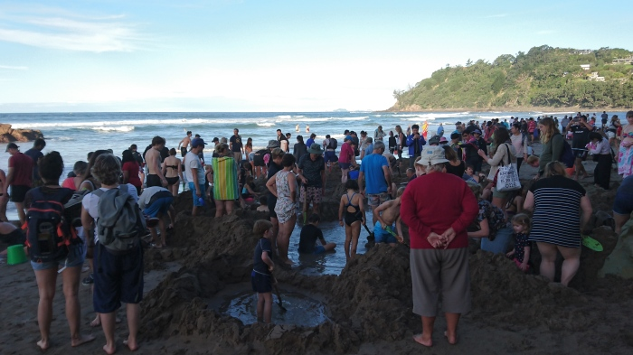 Crowd of people digging hot tubs on Hot Water Beach, New Zealand