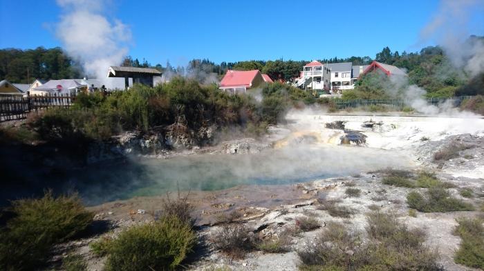Bubbling thermal pool in Whakarewarewa Thermal Village, Rotorua