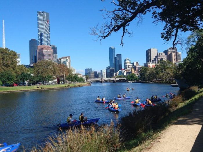 Kayakers on the Yarra River in Melbourne