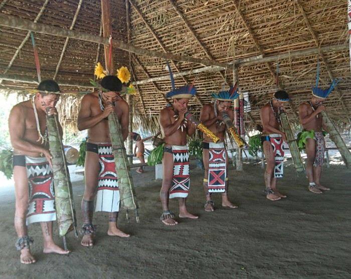 The indigenous Amazon jungle tribe 'Dessana' play musical instruments