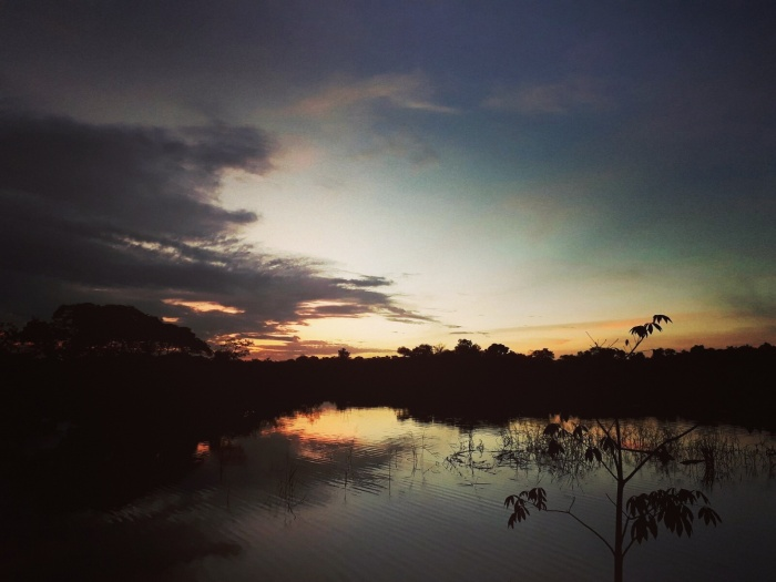 Sunrise over the water in the Amazon jungle