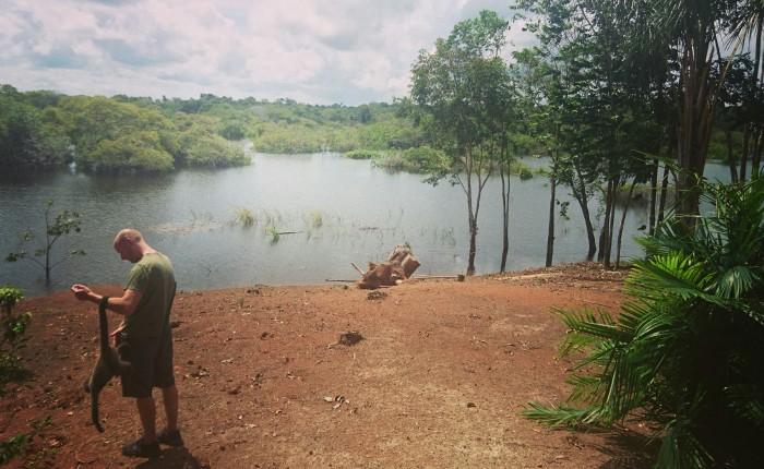 Wild encounters in the Amazonjungle