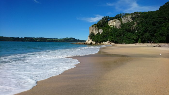 A beach on the Coromandel Peninsula, New Zealand
