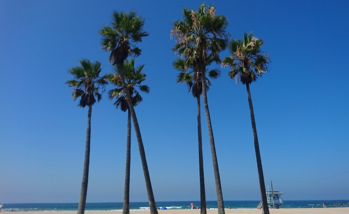 California dreaming: ten incredible things to do on a holiday to Los Angeles
